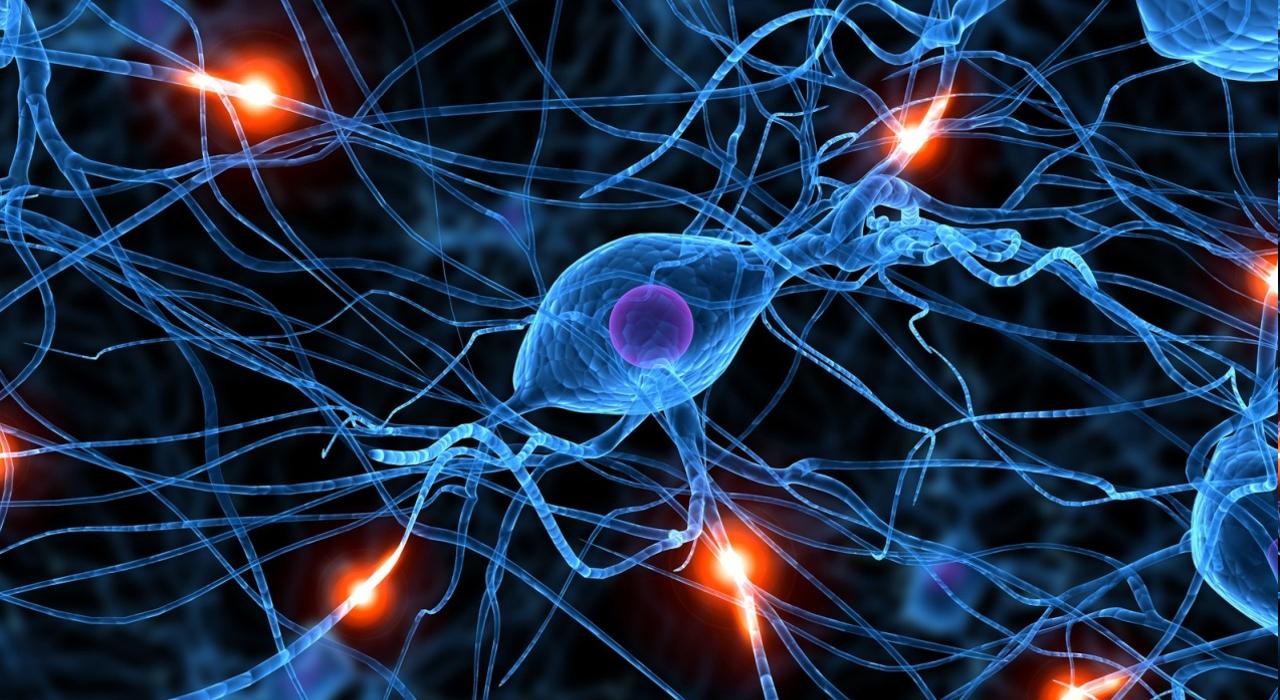 Neurons Firing (artist's impression).